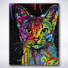 Load image into Gallery viewer, Paint Drop Splatter Cat - Paint by number