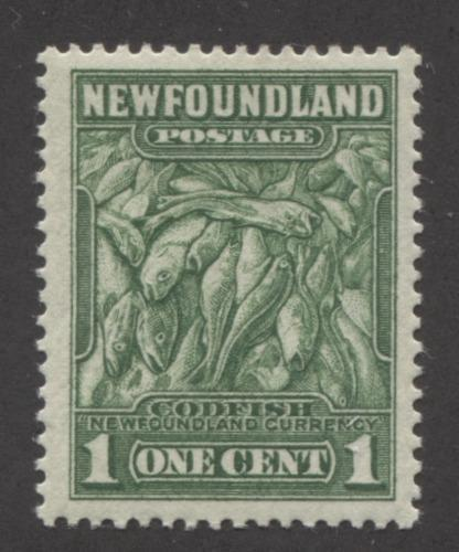 Newfoundland #183 (SG#209) 1c Yellowish Green Codfish 1932-37 Resources Issue Perf. 13.7 x 13.5 VF-75 OG Brixton Chrome