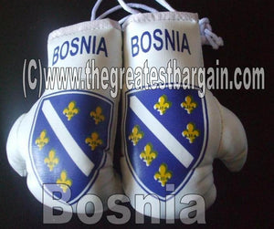 Bosnia Flag Mini Boxing Gloves