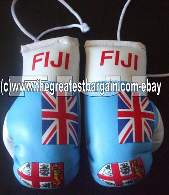 Fiji Flag Mini Boxing Gloves