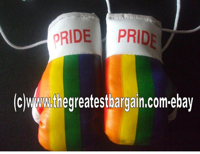 Gay Pride Flag Mini Boxing Gloves