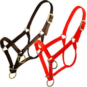 Large Packer's Halter W/Triple Thick Nylon Webbing in Brown-Atomic 79