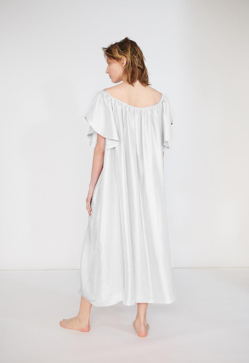 Hydrus Dress in Silk