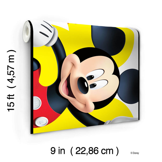 DY0203BD Disney Kids III Mickey Mouse and Friends Wall Border Multicolor