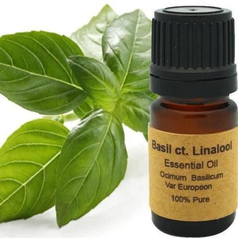 Basil CT. Linalool Essential - Conventional (Non GMO) Steam Distilled