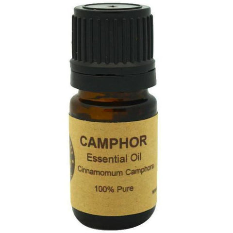 Camphor Essential Oil - Conventional (Non GMO) Steam Distilled