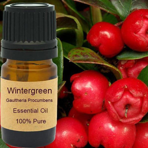 Wintergreen Essential Oil - Organic Steam Distilled