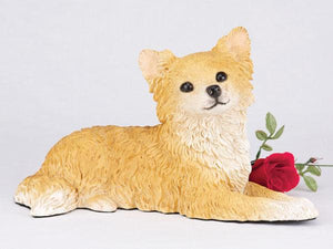 Companion Chihuahua Longhair, Fawn and White Dog Pet Urn
