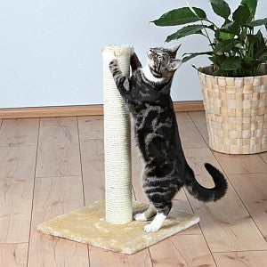 Tall Scratching Post