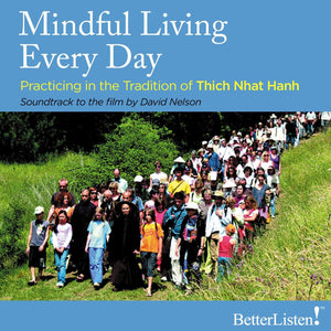 Mindful Living Every Day Practicing in the Tradition of Thich Nhat Hanh video Parallax Press - BetterListen!