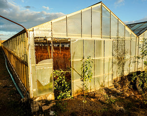 Greenhouse for a Village