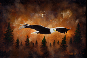 """EAGLE DREAMS"" - JASON FOBISTER"