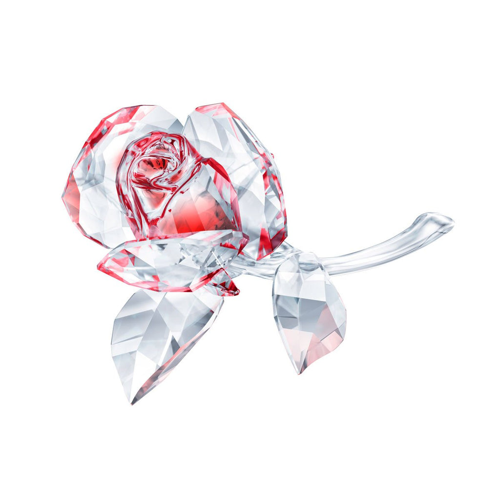 Swarovski Blossoming Rose Red 5428561