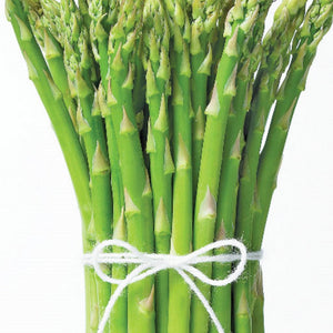 Asparagus Mary Washington (Sow Easy)