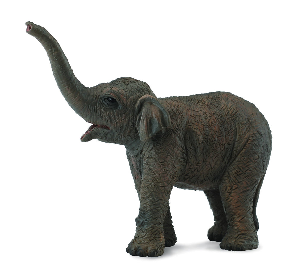 COLLECTA ASIAN ELEPHANT CALF
