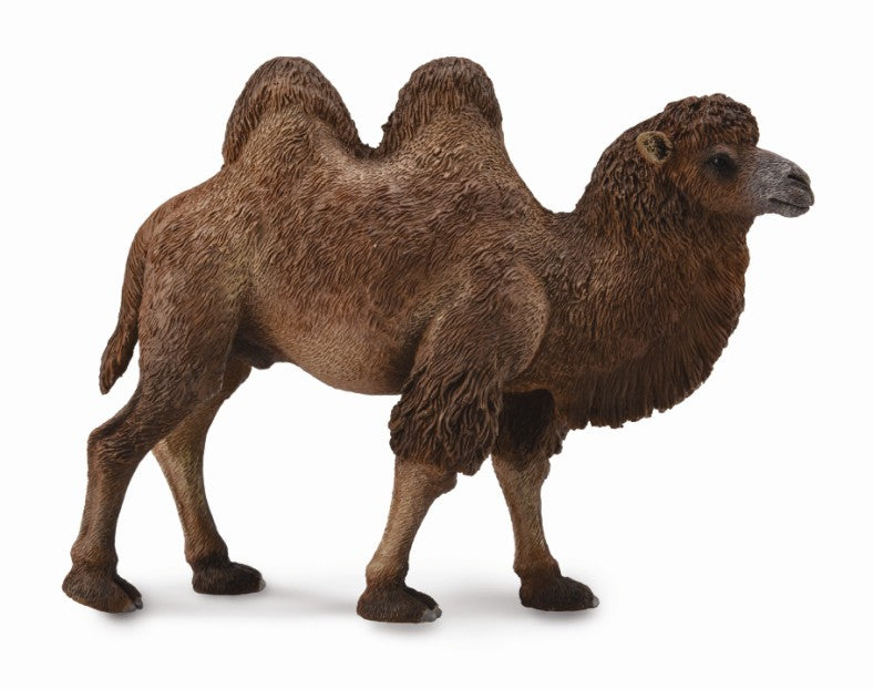COLLECTA BACTRIAN CAMEL