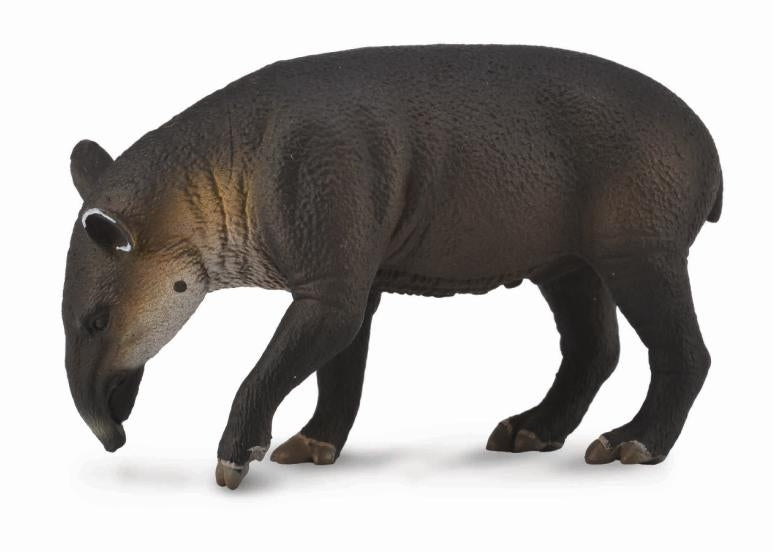 COLLECTA BAIRDS TAPIR