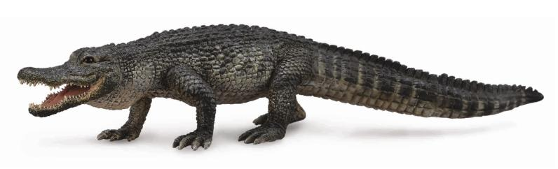 COLLECTA AMERICAN ALLIGATOR (L)