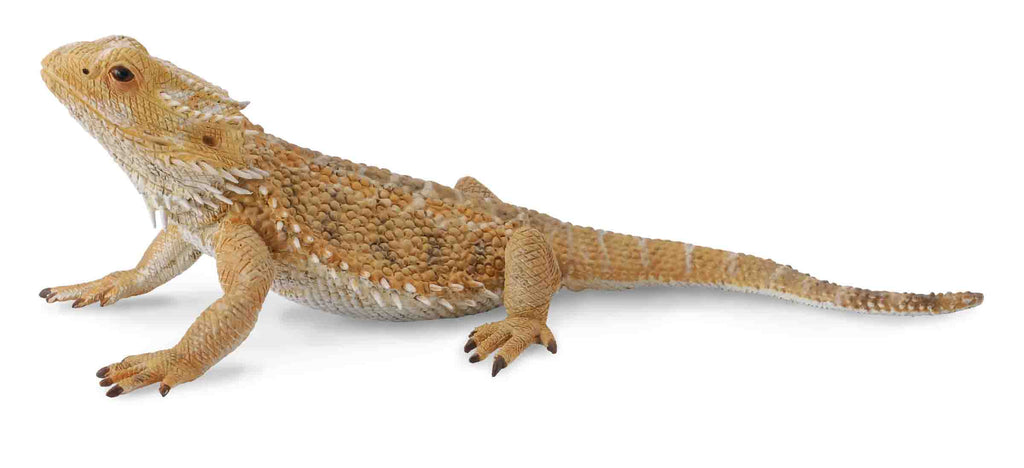 COLLECTA BEARDED DRAGON