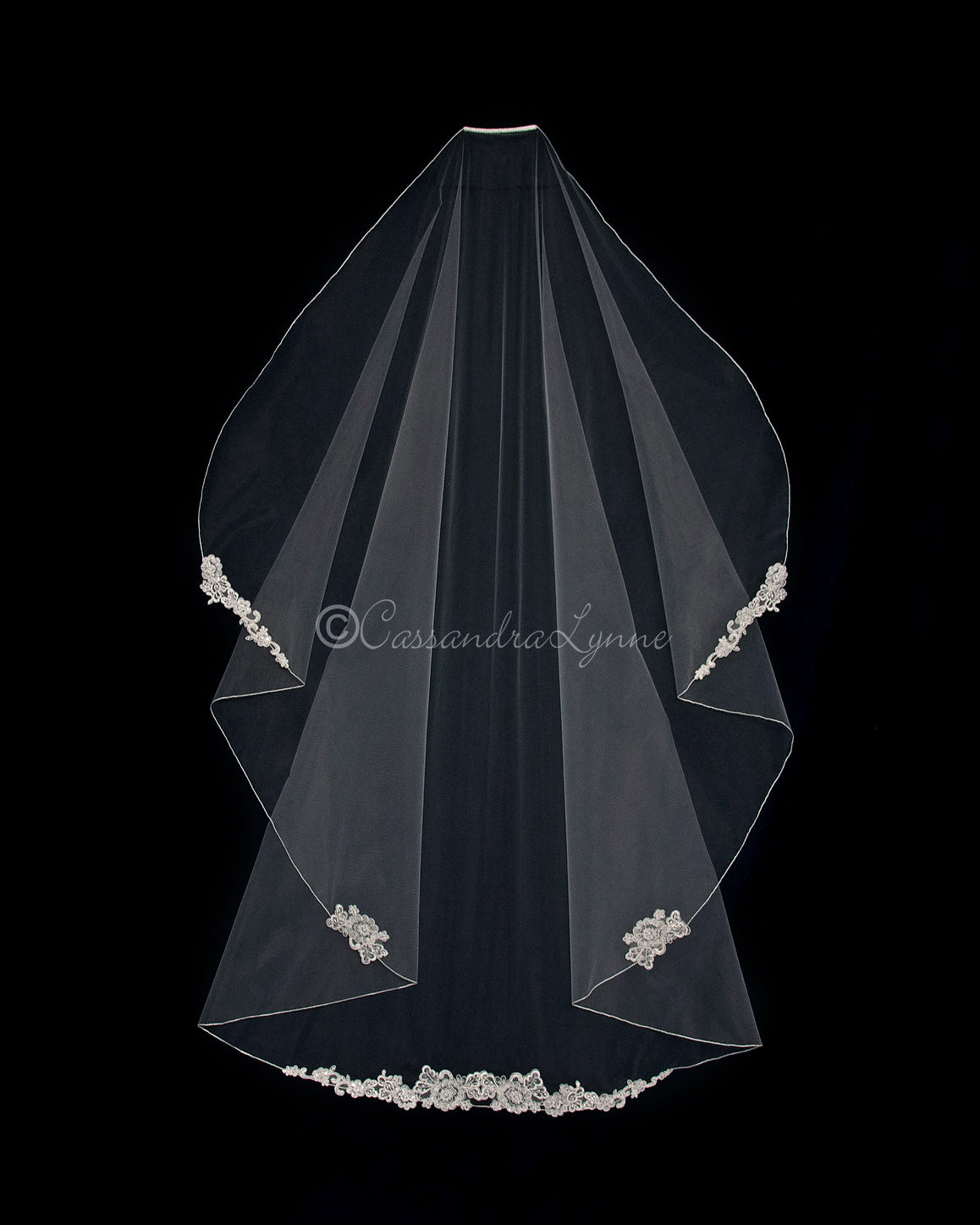 Sheer Waltz Veil with Lace Accents
