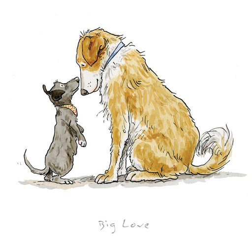 Anita Jeram Official Collectors Edition A Dogs Life Guess How Much I Love You