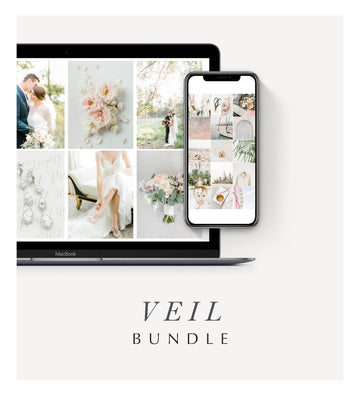Veil Desktop & Mobile Bundle