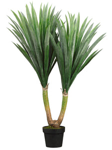 "43"" Tropical Yucca Plant in Pot Green (pack of 1)"