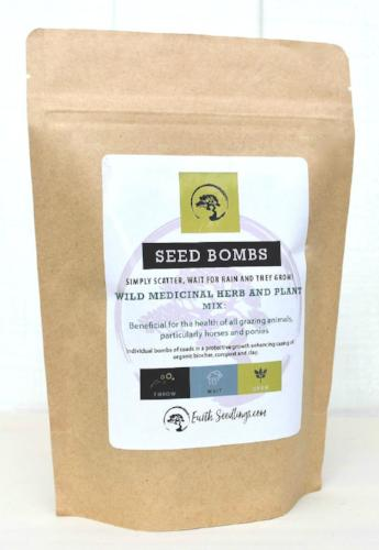 Wild Medicinal Herb and Plant Seed Bombs