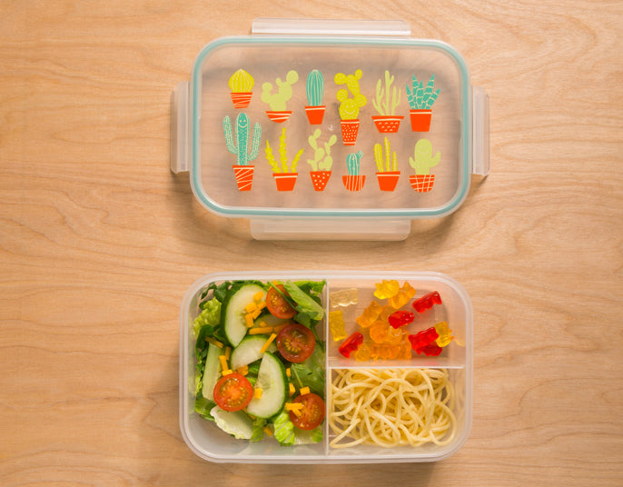 Happy Cactus™ Good Lunch® Bento Box