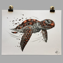 "Load image into Gallery viewer, Fine Art Print ""Seaturtle Slice"""