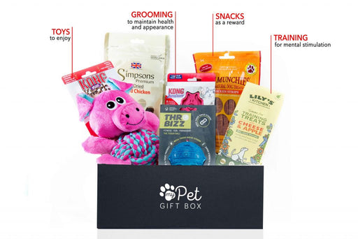 Build Your Own Dog Gift Box - My Pet Gift Box - My Pet Gift Box