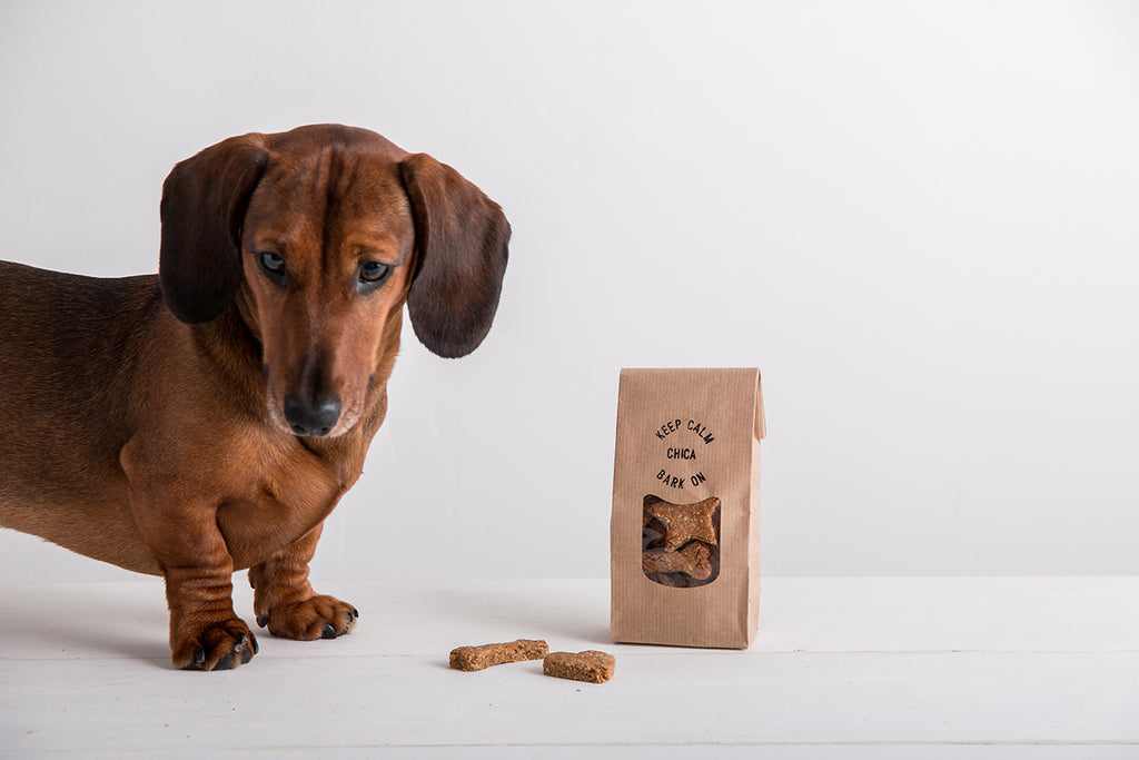 Keep Calm, Bark On, Dog Treats in a Personalised Bag