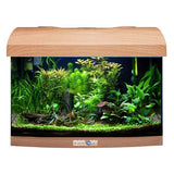 AQUAVIE StartUp 40 - Aquarium Hêtre Rectangle tout équipé 25L