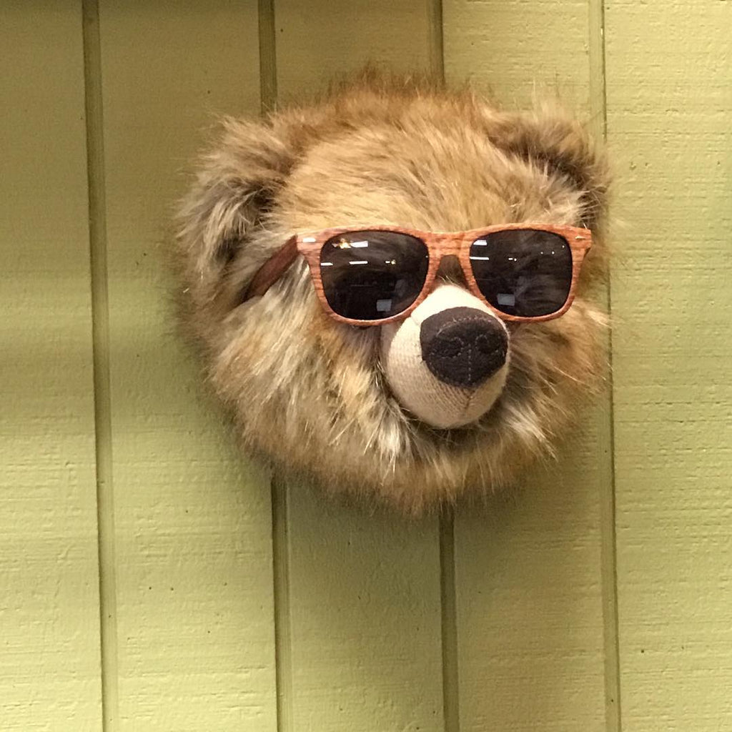When You Give a Bear Sunglasses...