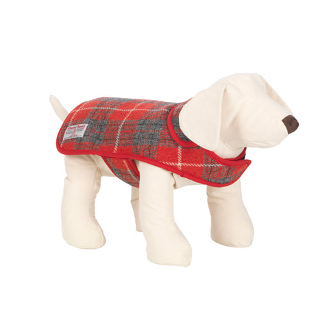 Hoxton Tartan Greyhound & Whippet Coat