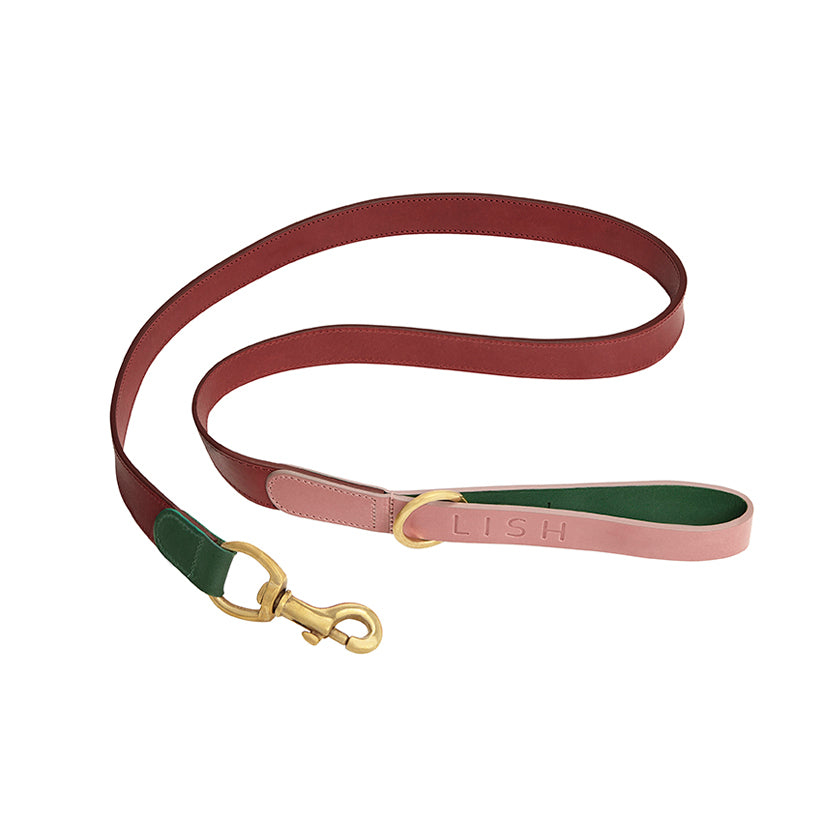 Pink and red designer dog lead and dog leash