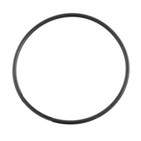 Poolrite O ring for CL cartridge filter lid - O-112