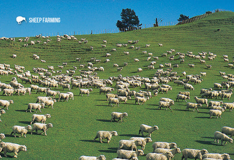 SGI483 - Sheep Farming - Small Postcard