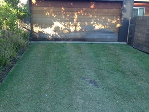 Overtime the drainage cell create a barrier for the grass roots. No matter how often you drive over it or how long the car sits there, the grass will not be damaged for the roots are completely protected by the Atlantis turf cell commonly known as 52mm drainage cell.