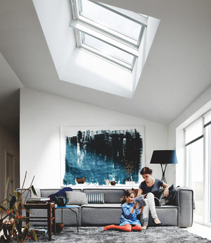 Lounge area with Pitched roof skylights