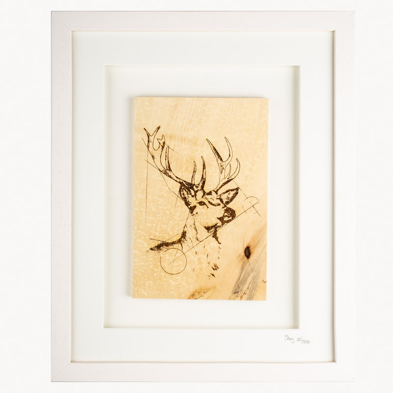 Framed Stag - Large