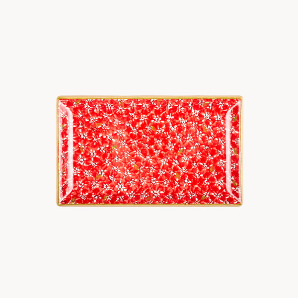 Rectangle Dish - Lawn - Red