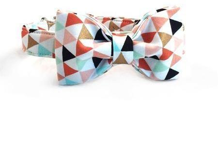 Colorful Banner Bow Tie Collar and Leash