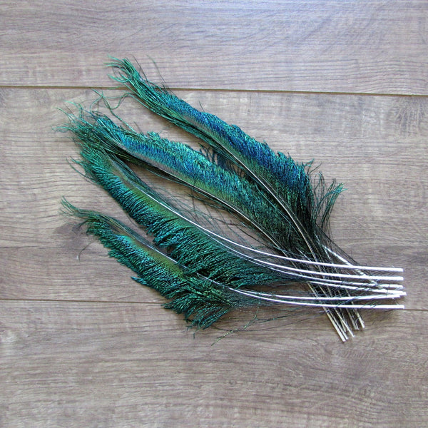 Peacock Sword Feathers