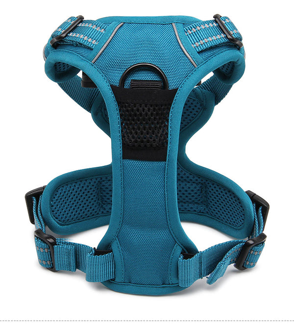 2 CLIP HARNESS BLUE X-LARGE