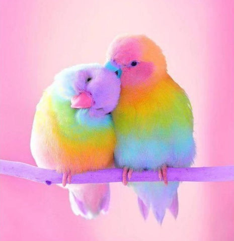 "Full Square & Round Drill, 5D DIY Diamond Painting - ""Rainbow Colored Love Birds"" -Diamond Paintings, Diamond Paintings Store"