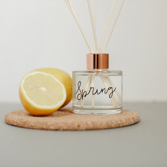 Spring scented room fragrance diffuser