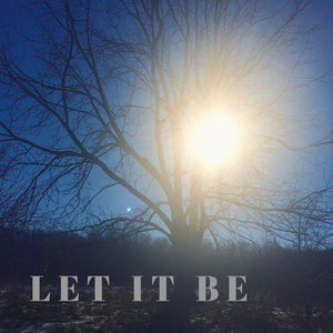 Expedition 1: Let it Be