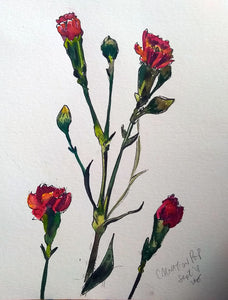 """Carnation Pop"" Watercolor and Ink"