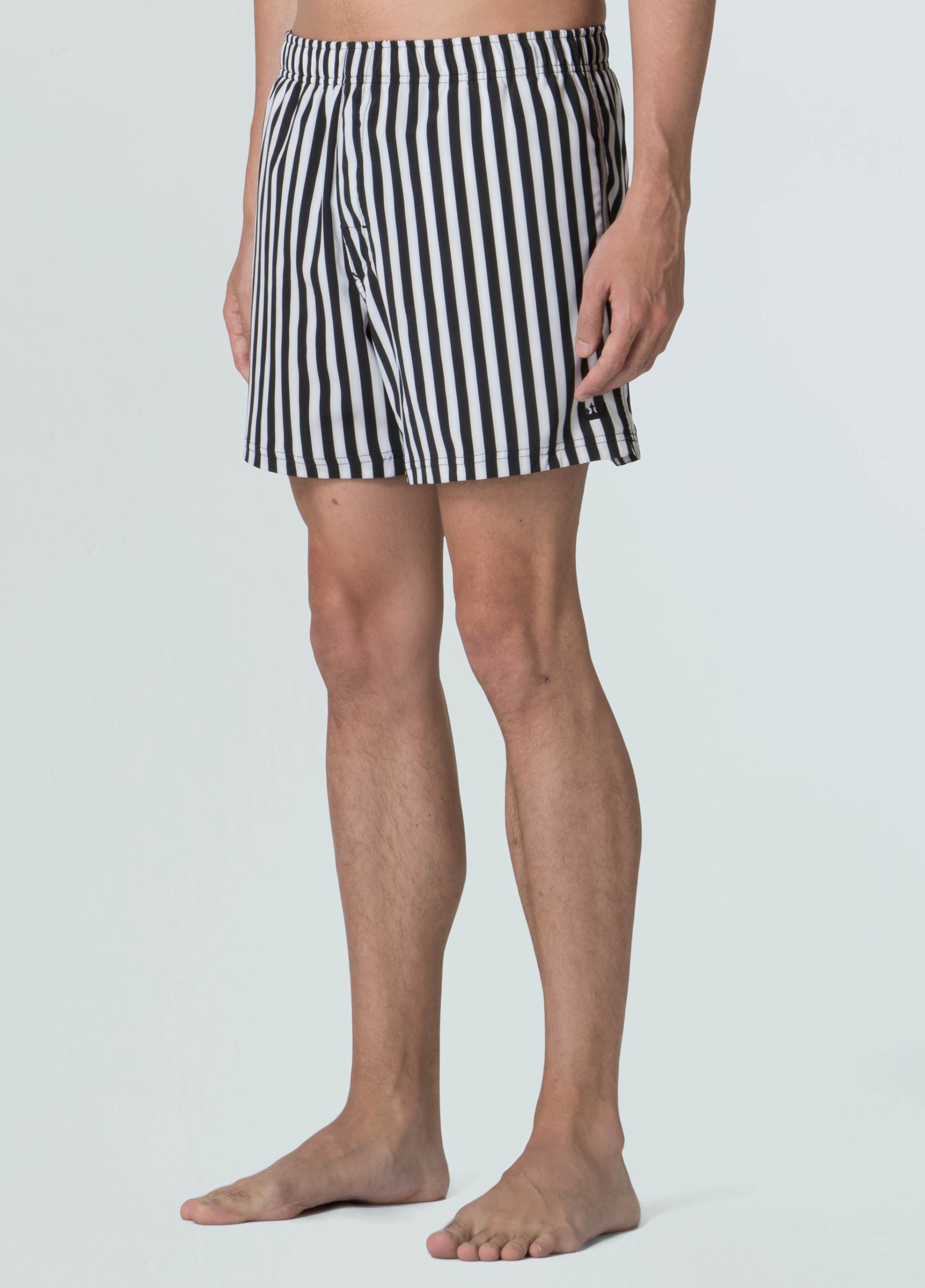 Stripe Beach Shorts
